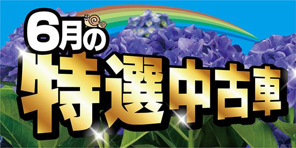 6月の特選中古車情報~!!